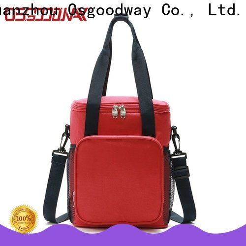 professional picnic cooler bag design for BBQs