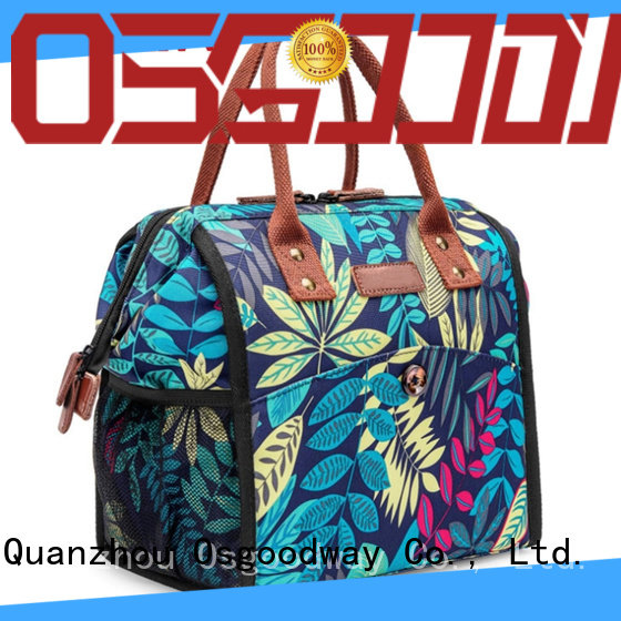 Osgoodway lunch cooler bag keep food fresh for BBQs