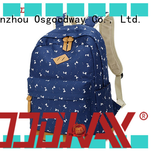 Osgoodway water resistant backpack online for business traveling