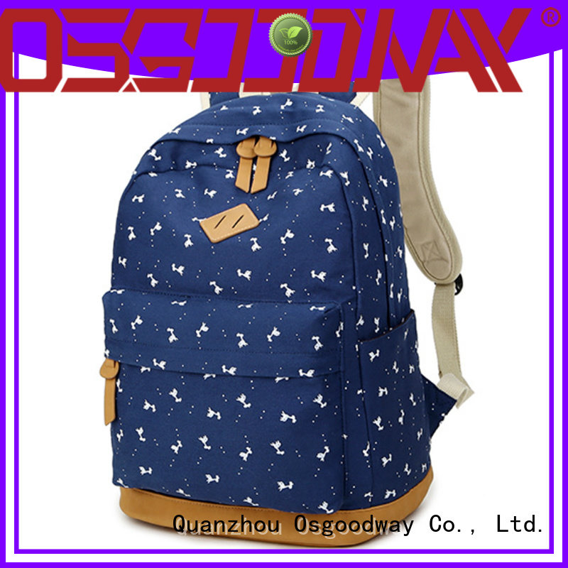 Osgoodway professional backpack on sale for business traveling